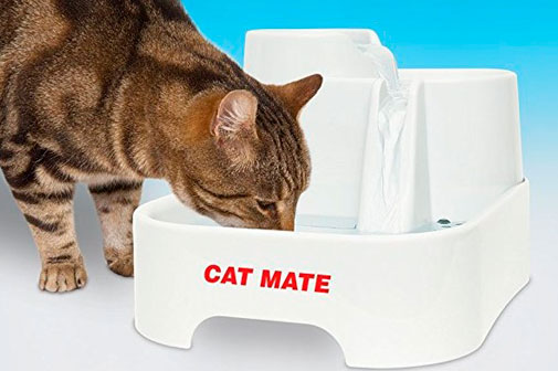Cat Mate Fountain