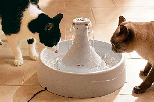 PetSafe Drinkwell 360 Fountain